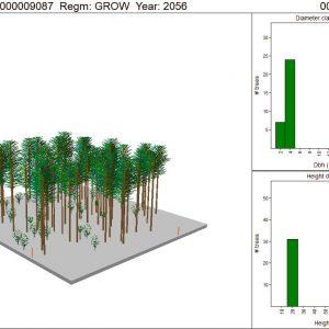 LiDAR + ForestView™