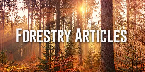 Northwest Management forestry articles